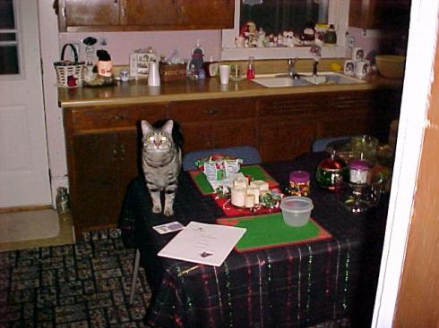 Cathouse Kitchen