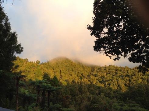 totokoroa-dawn